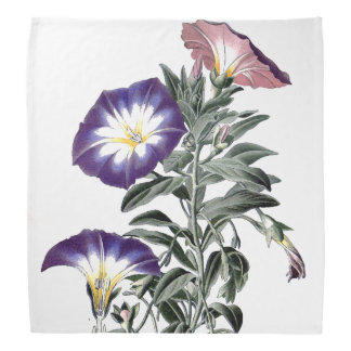 Botanical Morning Glory Flowers Floral Bandana