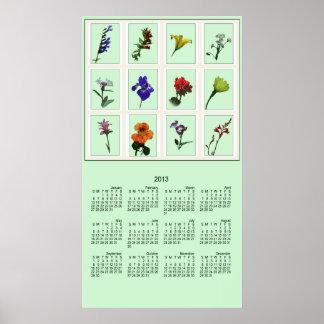 Botanical Photo Sketch 2013 Poster Calendar