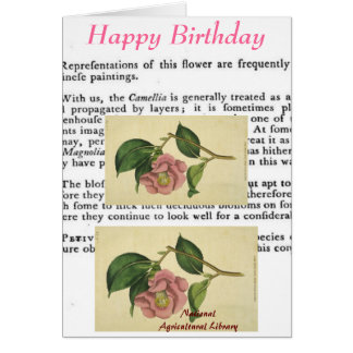 Botanical Print Birthday Card