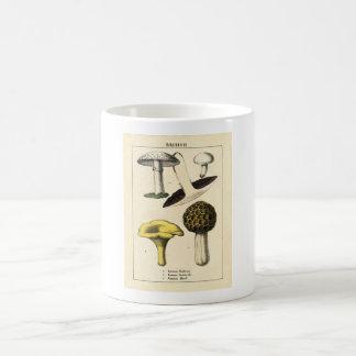 Botanical Print - British Mushrooms & Fungi Coffee Mug
