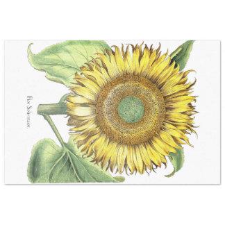 Botanical Sunflower Flower Floral Tissue Paper