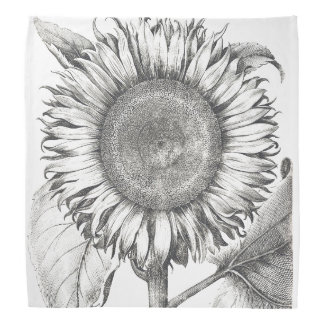 Botanical Sunflower Flowers Floral Bandana