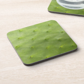 Botanical Tropical Green Cactus Photo Coaster
