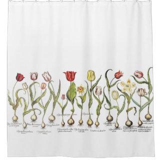 Botanical Tulip Flowers Floral Shower Curtain
