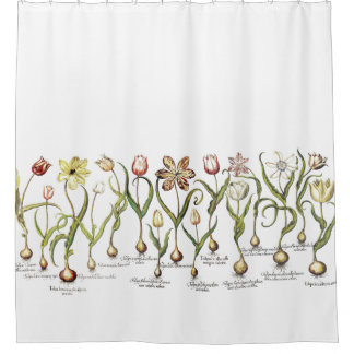 Botanical Tulip Flowers Floral Shower Curtain