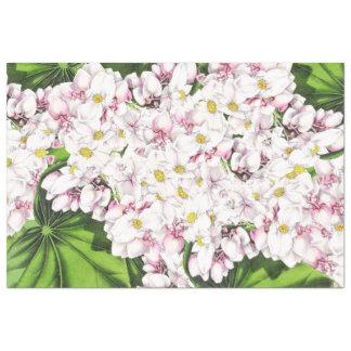Botanical White Flower Blossom Floral Tissue Paper