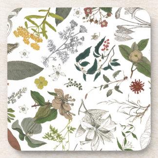 Botany Pattern 1 Coaster