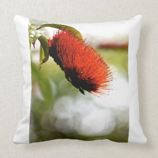 Bottle Brush bloom - Canvas Art - Tropical Throw Pillow