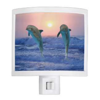 Bottlenose Dolphin at Sunrise Night Light