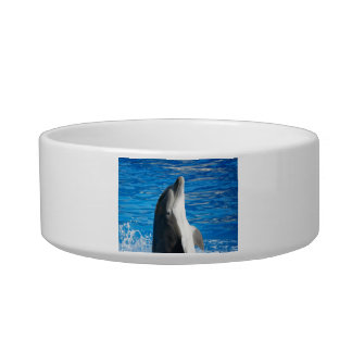 Bottlenose Dolphin Cat Water Bowls
