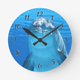 Bottlenose Dolphin looks at the camera under water Clock