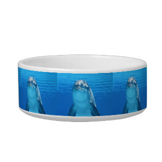 Bottlenose Dolphin looks at the camera under water Pet Water Bowls