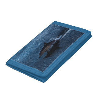 Bottlenose Dolphin off Surfers Paradise Tri-fold Wallet