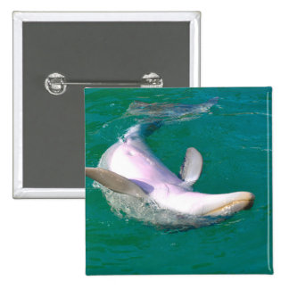 Bottlenose Dolphin Upside Down 2 Inch Square Button