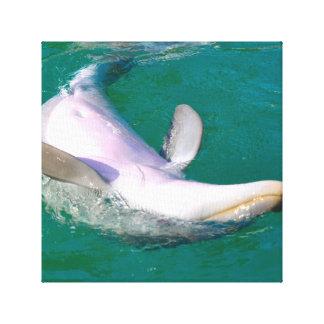 Bottlenose Dolphin Upside Down Canvas Print
