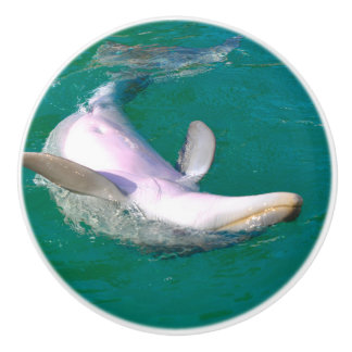 Bottlenose Dolphin Upside Down Ceramic Knob