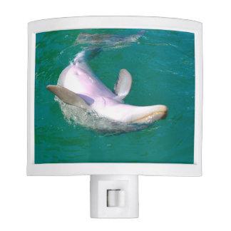 Bottlenose Dolphin Upside Down Nite Light