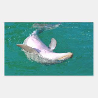 Bottlenose Dolphin Upside Down Sticker