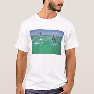 Bottlenose Dolphins Tursiops truncatus) 17 T-Shirt