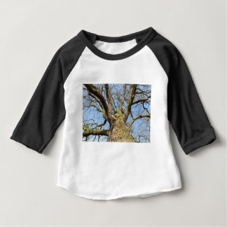 Bottom view oak tree without leaves in winter baby T-Shirt