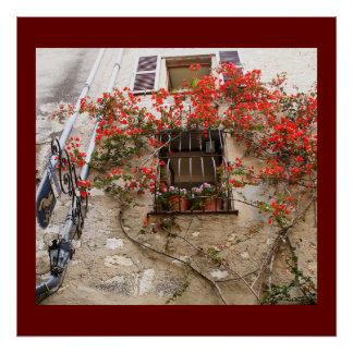 Bougainvillea at Window Poster