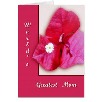 Bougainvillea Blossom Greeting Card