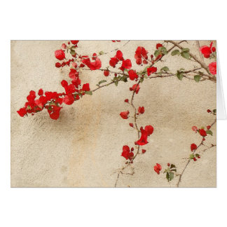 Bougainvillea Card