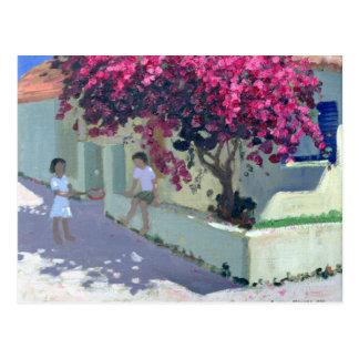 Bouganvillaea Zante 1999 Postcard
