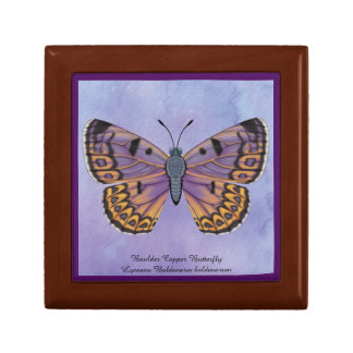 Boulder Copper Butterfly Gift Box
