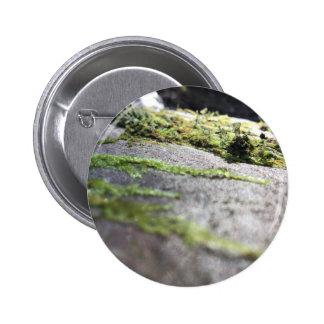 Boulder Lichen 2 Inch Round Button