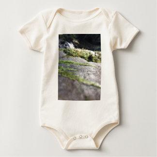 Boulder Lichen Baby Bodysuit