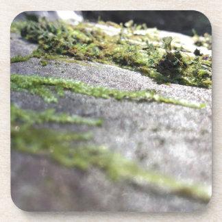 Boulder Lichen Coaster