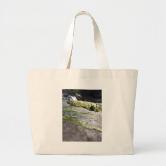 Boulder Lichen Large Tote Bag