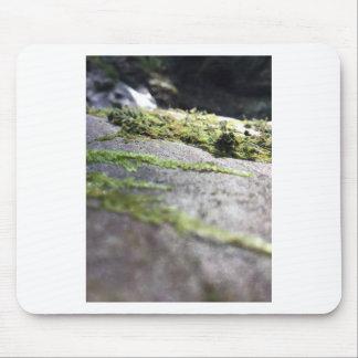 Boulder Lichen Mouse Pad