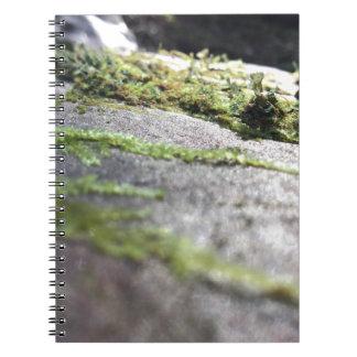 Boulder Lichen Notebooks