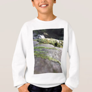 Boulder Lichen Sweatshirt