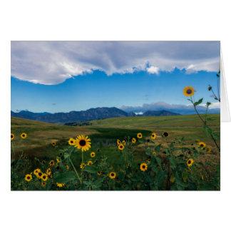 Boulder Summer Card