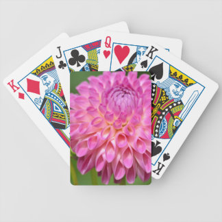 Bountiful Pink Dahlia and Bud Poster Bicycle Playing Cards