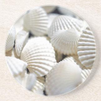 Bounty of Shells Coaster