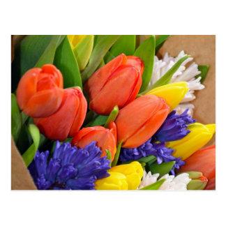 Bouquet coloré de tulipes de ressort carte postale