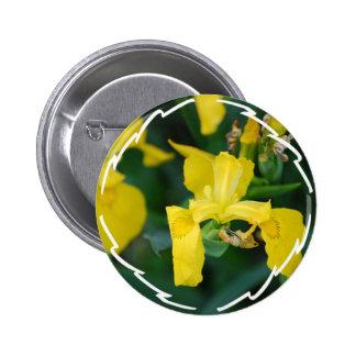 Bouton d iris jaune pin's avec agrafe