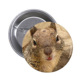 Bouton de sourire d'écureuil macaron rond 5 cm