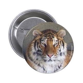 Bouton de tigre macaron rond 5 cm