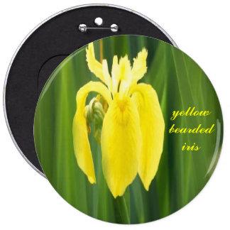 bouton jaune d iris barbu pin's