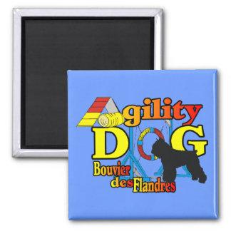 bouvier des flandres agility gifts magnet