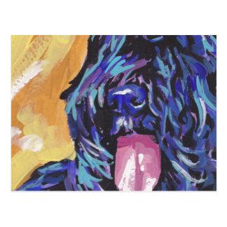 Bouvier Des Flandres Bright Colorful Pop Dog Art Postcard