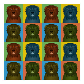 Bouvier des Flandres Dog Cartoon Pop-Art Poster