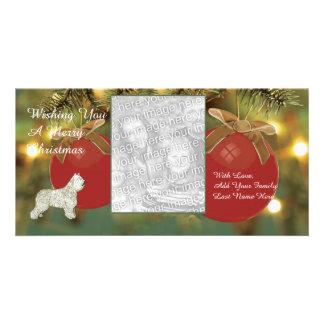 Bouvier des Flandres, Merry Christmas Custom Photo Card