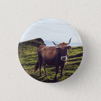 Bovine Cow on Beautiful Landscape 1 Inch Round Button