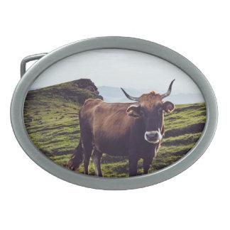 Bovine Cow on Beautiful Landscape Belt Buckles